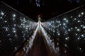 Capilano-Suspension-Christmas-Light20